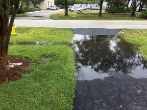 6 Signs You Have a Drainage Problem